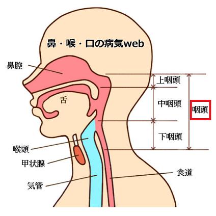 喉の痛みの原因や病気と、痛みがスッと消える12の治し方(対処 ...